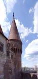 Ghotic fönster- och torndetaljer Fotografering för Bildbyråer