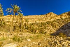 Ghoufi kanjon Arkivfoto