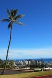 Giù città Honolulu immagini stock libere da diritti