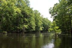 Giù il fiume Immagini Stock Libere da Diritti