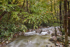 Giù il fiume Fotografia Stock Libera da Diritti