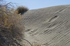 Giù nelle dune di sabbia del deserto fotografia stock libera da diritti
