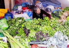 Βιετνάμ, αγορά της Gia Binh Farmer ` s στοκ φωτογραφίες