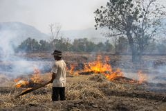 Gia Lai, Βιετνάμ - 12 Μαρτίου 2017: Ο τομέας επαρχίας με την πυρκαγιά έκανε με το ξηρό άχυρο ρυζιού στη Gia Lai, κεντρική ορεινή  Στοκ φωτογραφία με δικαίωμα ελεύθερης χρήσης