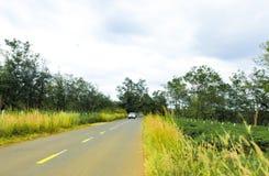 Gia Lai, Vietnam - November 24, 2018: The beautiful road passes through tea farm Gia Lai Province, Vietnam. Gia Lai, Vietnam - November 24, 2018: The beautiful royalty free stock images