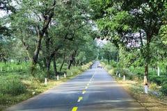 Gia Lai, Vietnam - November 24, 2018: The beautiful road passes through tea farm Gia Lai Province, Vietnam. royalty free stock image