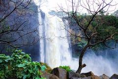 Gia Lai, Vietnam - 24 novembre 2018 : Cascade de Phu Cuong au Vietnam photographie stock libre de droits