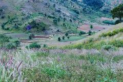 Gia Lai, Vietnam - 24 novembre 2018 : Montagne de Chu Dang Ya près de ville de Pleiku, province de Gia Lai, Vietnam images stock