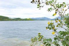 Gia Lai, Vietnam - 24 novembre 2018 : Région de touristes de Bien Ho, éco-tourisme avec le grand lac, forêt de pin autour, paysag image stock