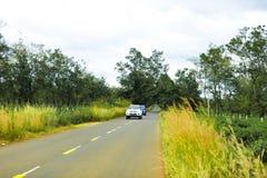Gia Lai, Vietname - 24 de novembro de 2018: A estrada bonita passa através da exploração agrícola Gia Lai Province do chá, Vietna fotografia de stock