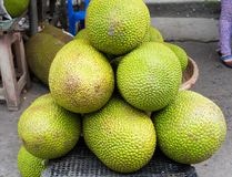 Giaca, frutta tropicale visualizzata al mercato di frutta di Vinh Long, delta del Mekong La maggior parte dei frutti del ` s del  Immagine Stock Libera da Diritti