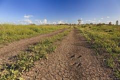 Giacimenti aridi rurali della strada di Moree Fotografia Stock