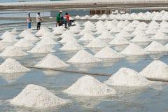 Giacimenti bianchi del sale in Tailandia Fotografia Stock