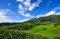 Giacimenti del riso del terrazzo del villaggio di paesaggio Fotografia Stock