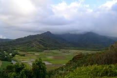 Giacimenti dell'azienda agricola e della montagna Immagine Stock Libera da Diritti