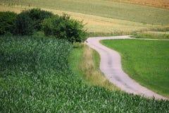 Giacimenti di grano nelle montagne della Germania Fotografia Stock Libera da Diritti