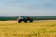 Giacimenti di spruzzatura del fertilizzante con grano Immagini Stock Libere da Diritti