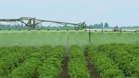 Giacimenti di spruzzatura della patata con i diserbanti Il lavoro dello spruzzatore dell'ugello 3D La protezione delle piante stock footage
