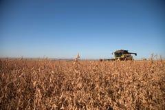 Giacimento agricolo della soia di raccolto meccanico immagini stock libere da diritti