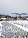 Giacimento congelato del riso in Shirakawa, Giappone Fotografia Stock Libera da Diritti