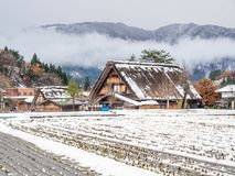 Giacimento congelato del riso in Shirakawa, Giappone Fotografie Stock Libere da Diritti