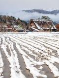 Giacimento congelato del riso in Shirakawa, Giappone Immagine Stock