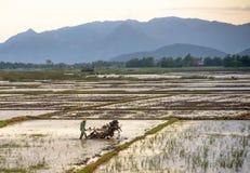 Giacimento d'aratura del riso dell'agricoltore asiatico con la macchina del trattore fotografia stock libera da diritti