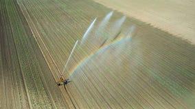 Giacimento d'innaffiatura dell'attrezzatura di irrigazione Siluetta dell'uomo Cowering di affari Irrigazione di Fotografia Stock Libera da Diritti