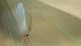 Giacimento d'innaffiatura dell'attrezzatura di irrigazione Siluetta dell'uomo Cowering di affari Irrigazione di Immagine Stock