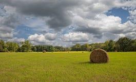 Giacimento del fieno con le nuvole ed il cielo blu Fotografia Stock Libera da Diritti
