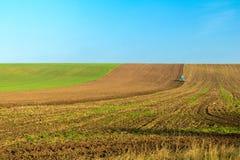 Giacimento del frumento autunnale nella caduta con un trattore Fotografie Stock