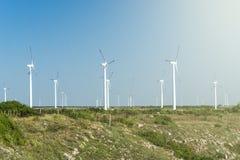 Giacimento del generatore eolico contro cielo blu, immagini stock
