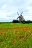 Giacimento del papavero e del mulino a vento Fotografie Stock