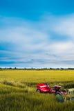 Giacimento del riso con il trattore rosso Fotografia Stock Libera da Diritti