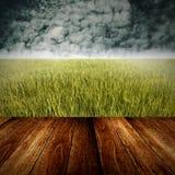 Giacimento del riso con la priorità alta di legno della piattaforma Immagine Stock Libera da Diritti