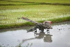 Giacimento del riso dell'aratro del trattore dell'attrezzo Fotografia Stock