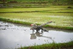 Giacimento del riso dell'aratro del trattore dell'attrezzo Immagini Stock Libere da Diritti