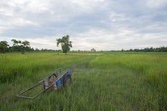Giacimento del riso e del carretto Immagini Stock