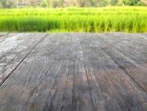 Giacimento del riso e pavimento di legno in Tailandia, fondo dell'alimento della natura Fotografie Stock