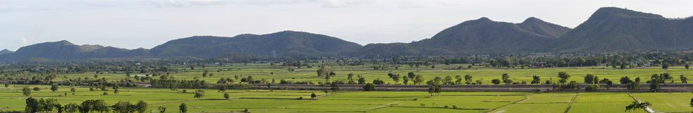 Giacimento del riso in Kanjanaburi Fotografia Stock Libera da Diritti