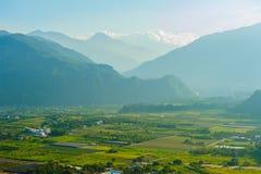 Giacimento del riso a Taitung, Taiwan fotografie stock libere da diritti