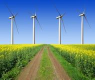 Giacimento del seme di ravizzone con i generatori eolici Fotografie Stock