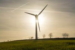 Giacimento del seme di ravizzone il giorno soleggiato con il generatore eolico nel fondo Fotografia Stock Libera da Diritti