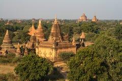 Giacimento del tempio di Bagan immagini stock libere da diritti
