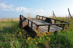 Giacimento del vagone del Wildflower Fotografia Stock Libera da Diritti