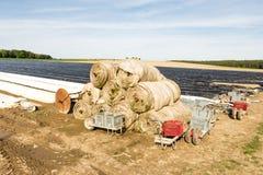 Giacimento dell'asparago coperto di stagnola platic Immagine Stock