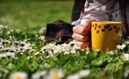 Giacimento della margherita e della tazza di caffè Fotografie Stock