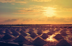 Giacimento della pentola del sale o del sale Immagine Stock Libera da Diritti