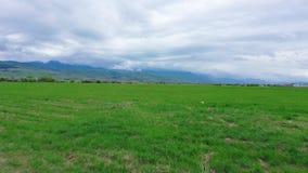 Giacimento della primavera in una valle della montagna Cielo nuvoloso archivi video