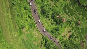 Giacimento della strada principale e del riso dell'automobile da sopra il fuco di volo Piantagione del riso di verde di vista aer archivi video